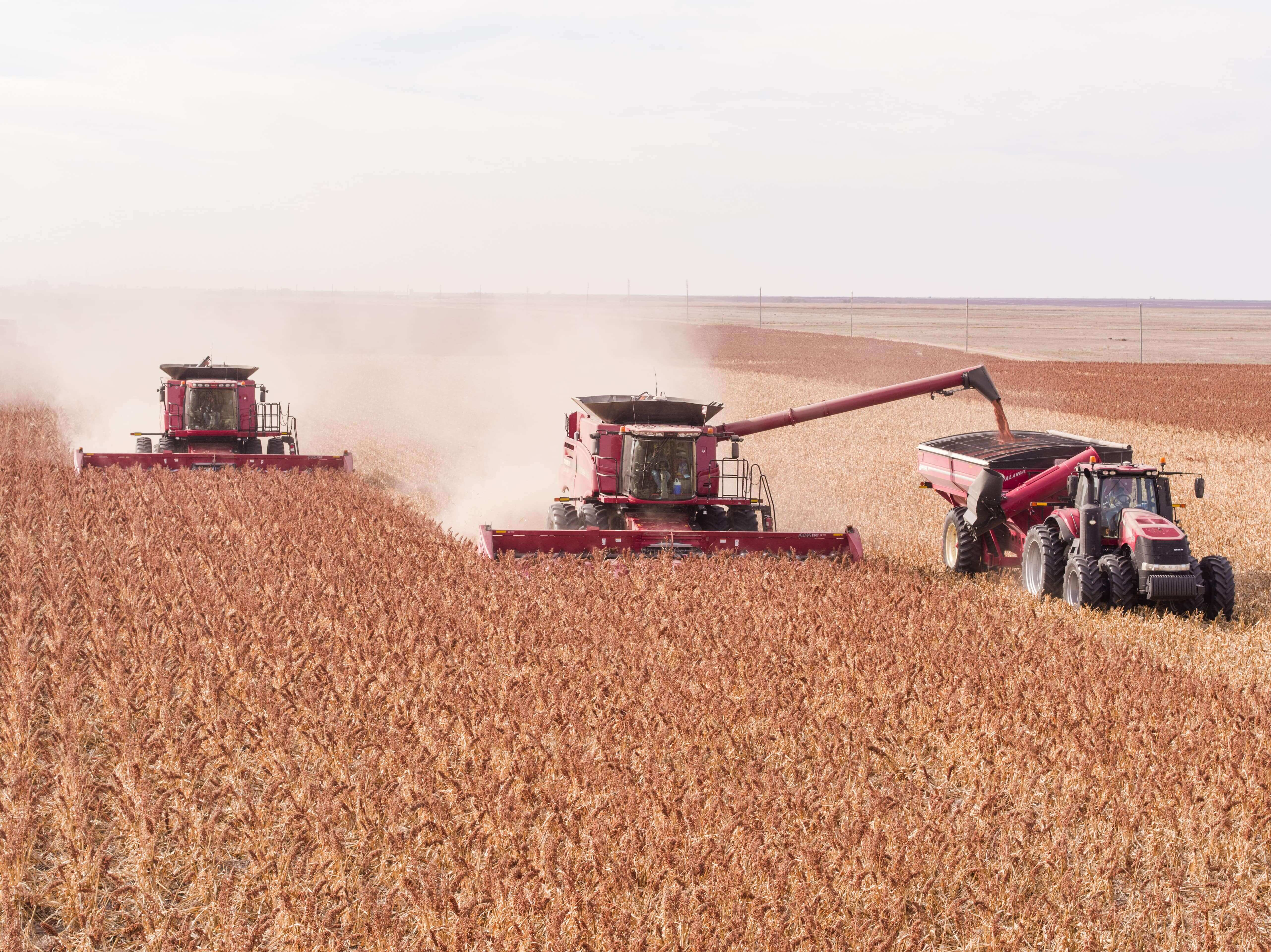 Three red combines using ARRO®.